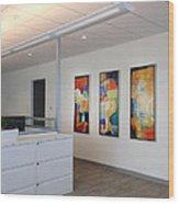 Miami Rythym Triptych Wood Print by Sheila Elsea