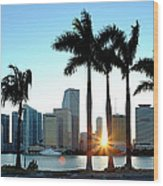 Miami Skyline Viewed Over Marina Wood Print