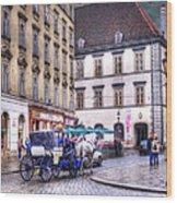 Michaelerplatz. Vienna Wood Print