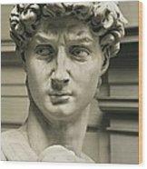 Michelangelo 1475-1564. David Wood Print