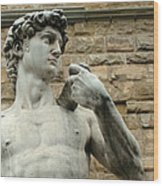 Michelangelo's David 1 Wood Print