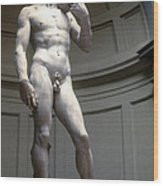 Michelangelo's David Wood Print