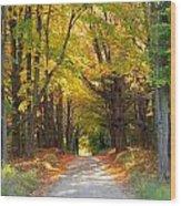 Michigan Back Roads Wood Print