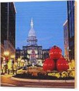 Michigan Capital Wood Print