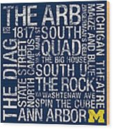 Michigan College Colors Subway Art Wood Print by Replay Photos