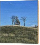 Michigan Fields Wood Print