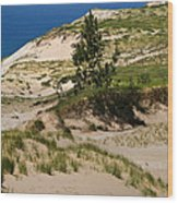 Michigan Sleeping Bear Dunes Wood Print