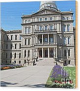 Michigan State Capital Wood Print