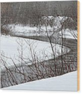 Michigan Stream Wood Print