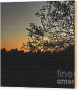 Michigan Sunrise 01 Wood Print