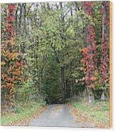 Michigan's Gateway to Fall Wood Print
