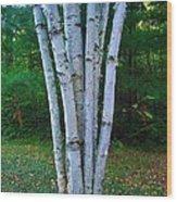 Micro-grove Wood Print