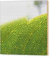 Micro Leaf Wood Print