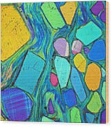 Art And Geology Wood Print