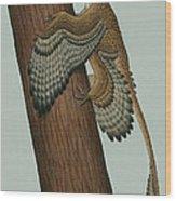 Microraptor Gui, A Small Theropod Wood Print