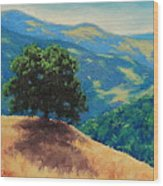 Mid Day On Golden Hills Wood Print