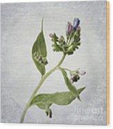 Mid Summer Scent Wood Print