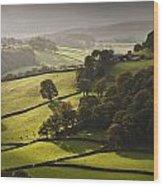 Mid Wales Autumn Landscape Wood Print