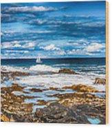 Midday Sail Wood Print