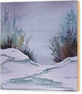 Midday Winter In Maine Wood Print