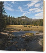 Middle Fork Of The San Joaquin River Wood Print
