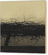 Middlethorpe Tree In Fog Antique Yellow Panorama Wood Print