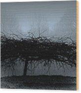 Middlethorpe Tree In Fog Blue Wood Print