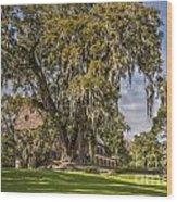 Historic Middleton Place  Wood Print