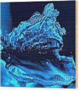 Midnight Blue Sea Shell Wood Print