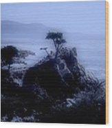 Midnight Cypress Wood Print