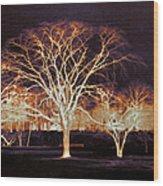 Midnight Glow Wood Print
