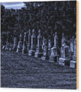 Midnight In The Garden Of Stones Wood Print by Thomas Woolworth