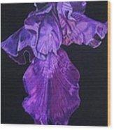 Midnight Iris Wood Print