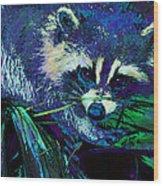 Midnight Racoon Wood Print