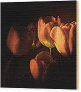 Midnight Tulips Wood Print