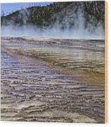 Midway Wood Print