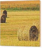 Midwest Farming Wood Print