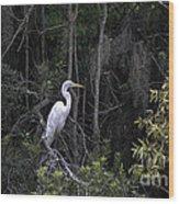 Mighty Heron Wood Print