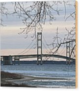 Mighty Mac Wood Print