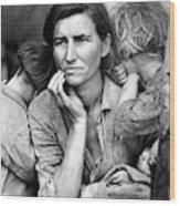 Migrant Mother, 1936 Wood Print