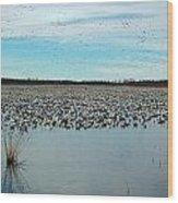 Migrating Geese Wood Print