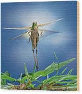 Migratory Locust Flying Wood Print
