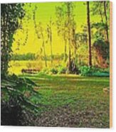 Mike's Back Yard Wood Print