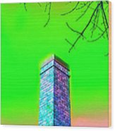 Mildrena's Chimney - Branches Wood Print by Wendy J St Christopher