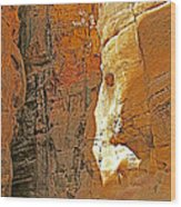 Mile-long Canyon Leads Through 600 Foot Deep Gorge To The Treasury In Petra-jordan Wood Print