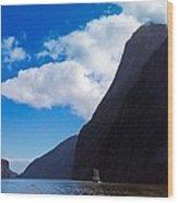 Milford Sound #3 Wood Print
