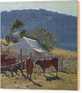 Milking Time. Araluen Valley Wood Print