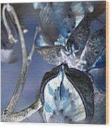 Milkweed In Blue Wood Print