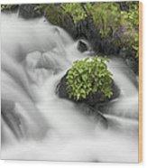 Milky Stream Wood Print