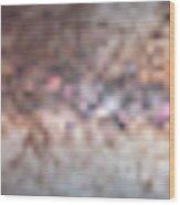 Milky Way 360� Panorama Wood Print